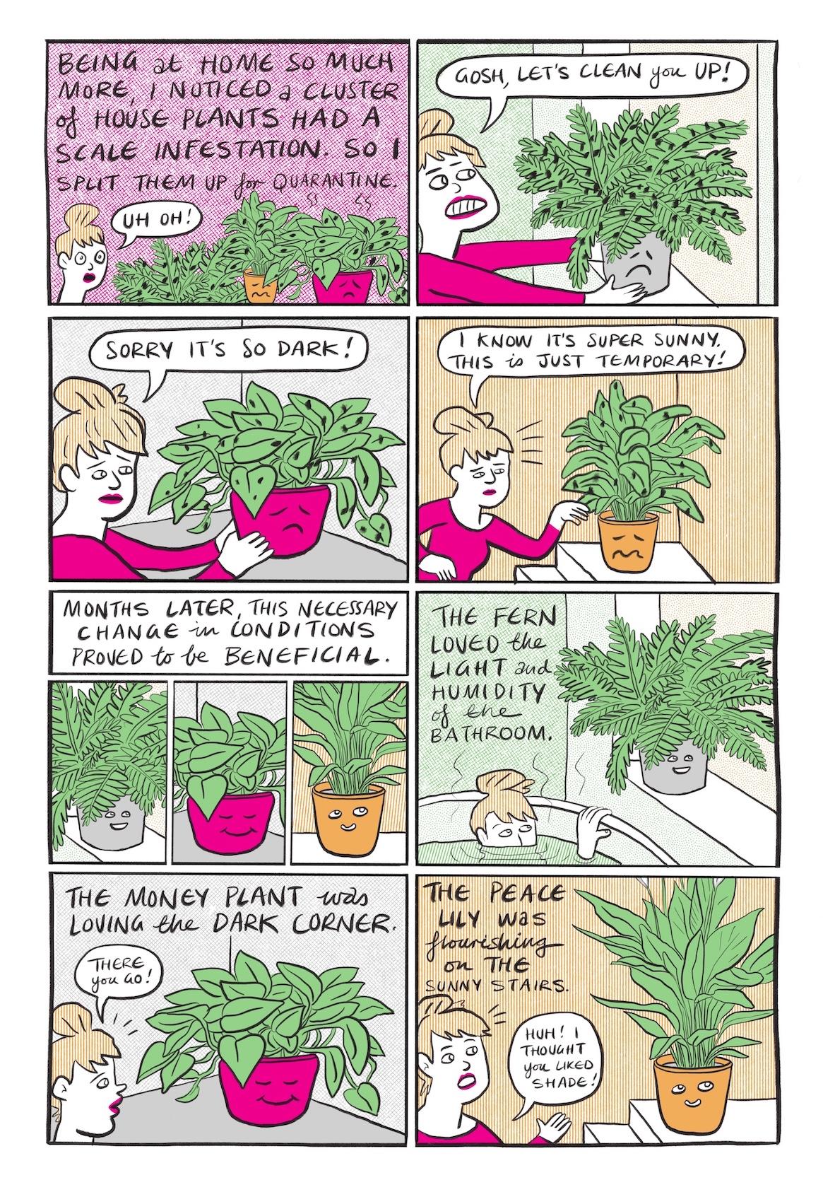 Seite 6: Bild 1: Vor weiß-pink meliertem Hintergrund sind drei Pflanzen zu sehen, die mit schwarzen Punkten, Schildläusen, übersäht sind. Bei zweien, auf der rechten Seite des Bildes, ist auch der Topf, links orange, rechts pink, zu sehen. Beide gucken unglücklich drein. Links sieht man die Protagonistin halsaufwärts, ihr Mund ist geöffnet und ihre Augen ebenfalls weit aufgerissen. In einer Sprechblase vor ihrem Mund steht Uh Oh! Darüber steht…  Als ich so viel mehr zu Hause war, bemerkte ich, dass eine Gruppe von Zimmerpflanzen einen Schildlausbefall hatte. Also habe ich sie aus Quarantänezwecken aufgeteilt.   Bild 2: Die Protagonistin stellt eine der Pflanzen des vorherigen Bildes, einen Farn in einem grauen Topf mit traurigem Gesicht, der ebenfalls mit Schildläusen übersäht ist, auf die Fensterbank eines hellgrünen Raumes. Sie blickt die Pflanze besorgt an und zeigt dabei ihre Zähne. In einer Sprechblase, die aus ihrem Mund kommt, steht…  Mein Gott, wir machen dich jetzt sauber!  Bild 3: Die Protagonistin stellt die Pflanze in dem pinkfarbenen Topf auf einen grauen Tisch in einem hellgrauen Raum. Auch das Gesicht auf dieser Pflanze schaut traurig und ist mit Schildläusen übersäht. Die Protagonistin blickt auch hier erneut besorgt, ihre Augenbrauen sind nach unten gezogen. Auf einer Sprechblase, die aus ihrem Mund kommt, steht…  Tut mir leid, dass es so dunkel ist!  Bild 4: In einem hellorangenem Raum stellt die Protagonistin, weiterhin im pinkfarbenem Langarm-Shirt, die Pflanze in dem orangenen Blumentopf, auch dieser hat ein zerknirschtes Gesicht aufgezeichnet, auf eine weiße Kommode. Sie blickt auch diese Pflanze besorgt an und berührt eine ihrer Blätter. In einer Sprechblase, die aus ihrem Mund kommt, steht …   Ich weiß, es ist super sonnig, aber das ist nur vorübergehend!  Bild 5: Die drei Pflanzen sind in drei einzelnen Quadraten nebeneinander dargestellt. Alle drei lächeln nun und haben keine Schildläuse mehr auf sich. Darüber steht…  Monate später erwies s